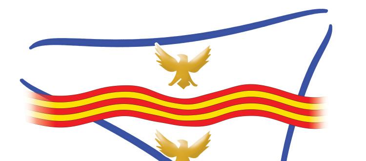 Report sul I° Anniversario della nascita del movimento Siciliani Liberi