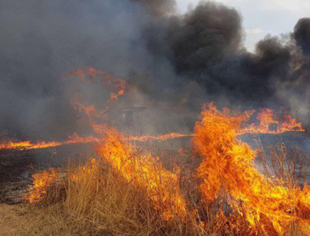 Impedire gli incendi in Sicilia, si può.