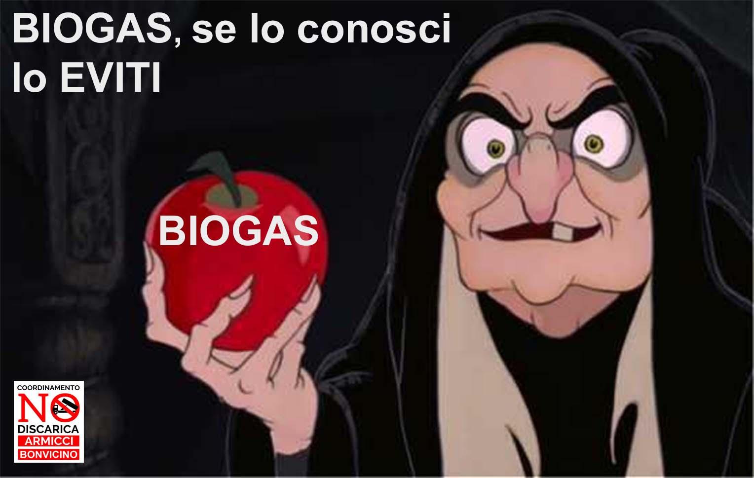 Sulla questione del biogas e altro.