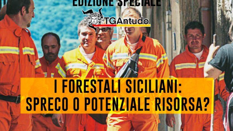 TGAntudo – I forestali siciliani: spreco o potenziale risorsa?