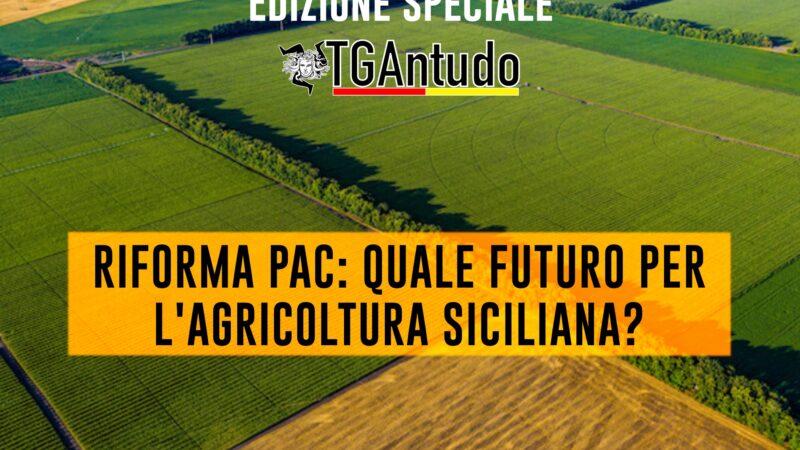 TGAntudo – Riforma PAC: quale futuro per l'agricoltura siciliana?