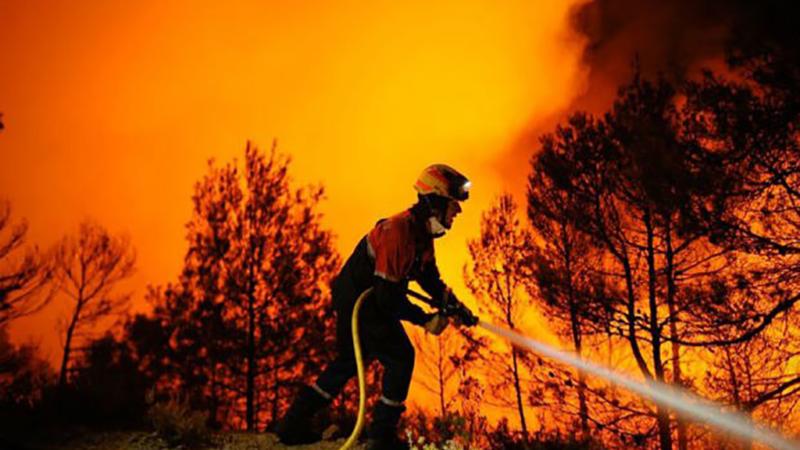 Operai Forestali Uniti pronti alla mobilitazione